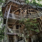 Giant_Tree_House_Horace_Burgess_Subtielman05