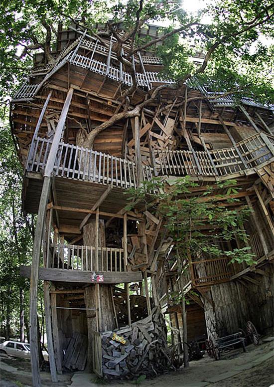 Hebat - Rumah 10 Tingkat Dibina Diatas Pokok
