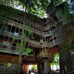 Giant_Tree_House_Horace_Burgess_Subtielman07